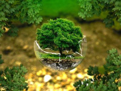 inversion-sostenible-medio-ambiente