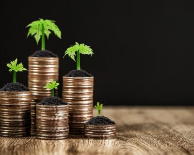 Coins are stacked in a graph shape with sapling of a growing tree.